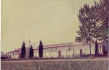 Il Campo di San Giuliano nel 1964 (Archivio La Fenice Asd)