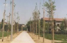 BISSUOLA parco studio milazzo1