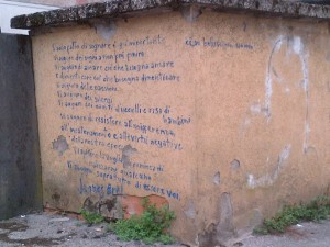 CURIOSITA murales via benelli